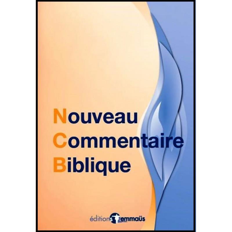 commentaire de la bible pdf